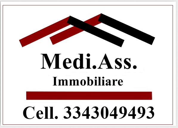Logo mediass virtual orizzontale